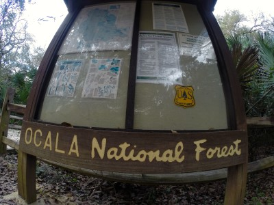 Ocala National Forest Camping